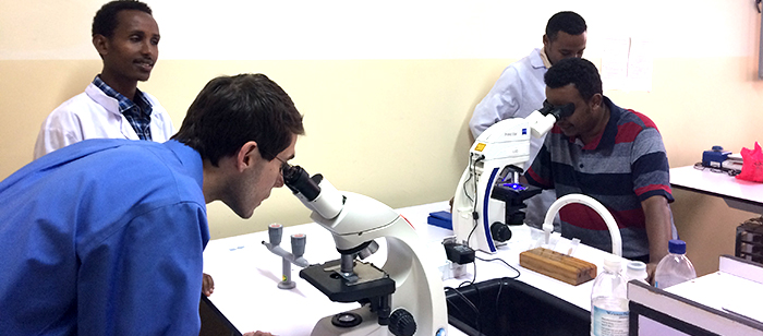 Several people are looking into microscopes.